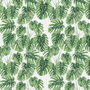 botanical480